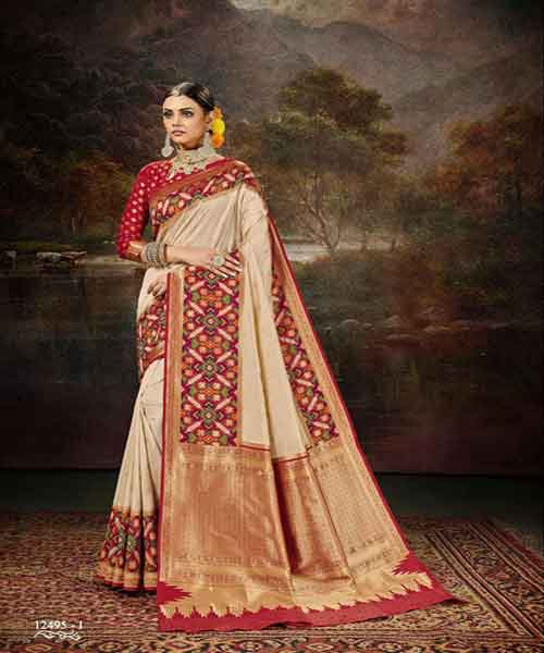 Patola Sarees : The Variety and Class